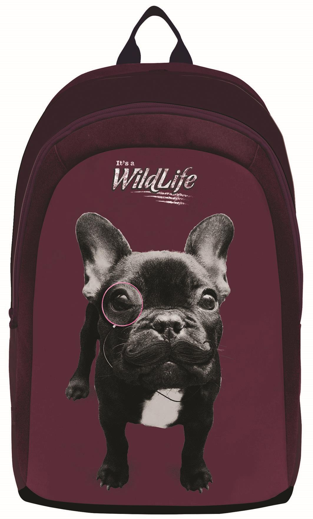 Bagtrotter - Bagtrotter τσάντα δημοτικού σκύλος με 2 θήκες 45x32x16εκ. - - - - 3 σχολικά   τσάντες   δημοτικού