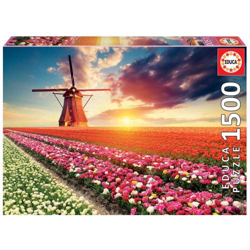 1500 Tulips landscape